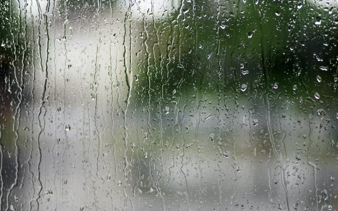 Seminar Topic - Spring Storms